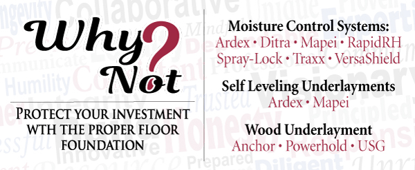 Why Not? Underlayment / MC